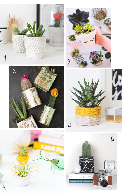 DIY roundup six ways to decorate your planters