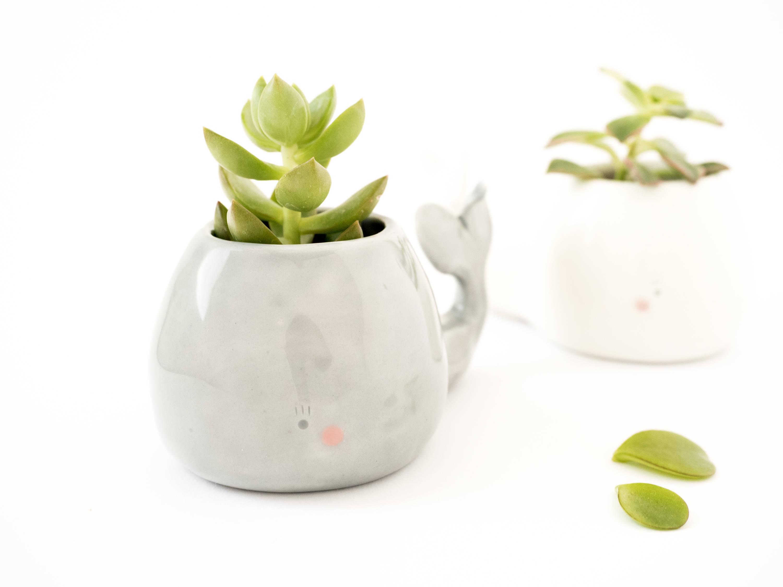 whale planter by tramai ceramics